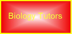 Biology Tutors Saudi Arabia